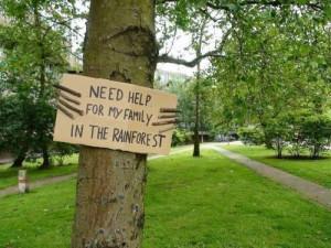 tree protest nature save environment rainforest