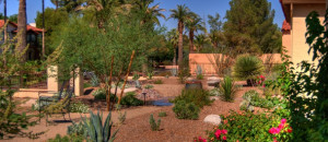Arizona Residential Landscape