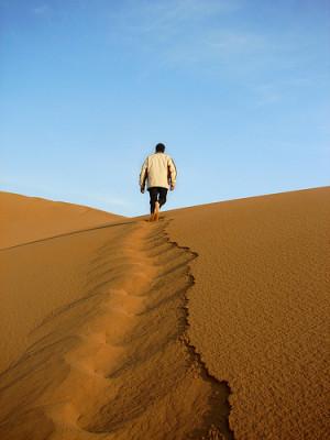 Desert Leader by Hamed Saber