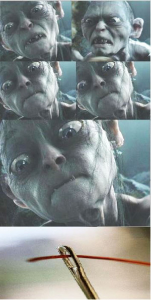 Funny photos funny Gollum Lord Of The Rings