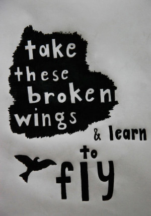 learn to fly the beatles picture quote