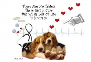 Beagle Quotes