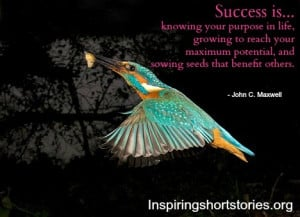 success-quotes-inspirational-quotes-inspiring-quotes-quotes_large.jpg