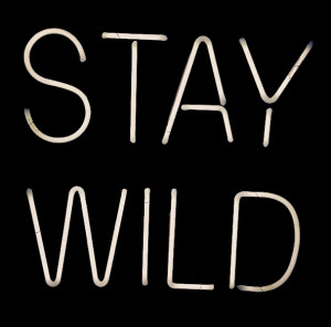 Stay Wild: Order Your Own Custom Neon Sign