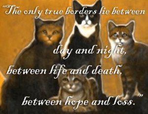 ... Quote said by Brambleberry, the RiverClan medicine cat from the time