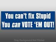 You Can't Fix Stupid •