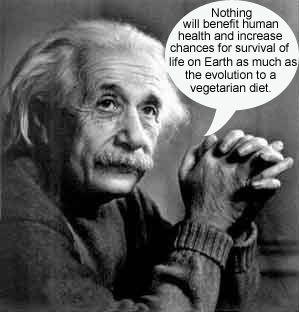 ... VEGETARIANER: Einstein, Platon, Darwin, Voltaire, da Vinci