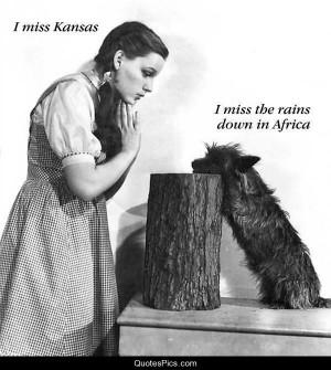 miss Kansas – The Wizard of Oz