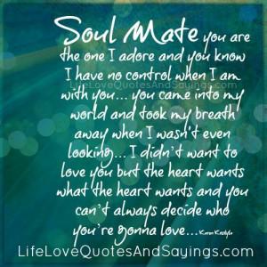 Soul mate you ...
