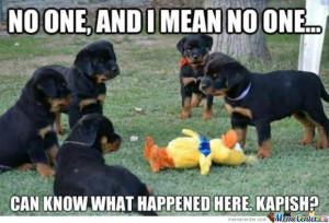 Puppy Mafia