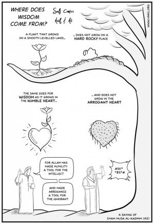 Sufi Comics: Where does Wisdom come from?