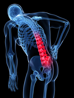 Low Back Pain: The Pains of a Busy Life