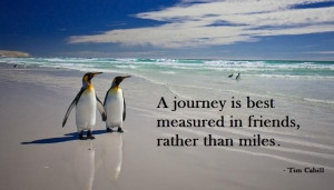 "... is best measured in friends, not in miles."" ~ Tim Cahill #quote"