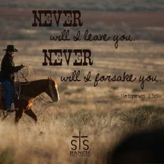never more equine quotes cowgirls quotes hebrew 135 country quotes 2 1