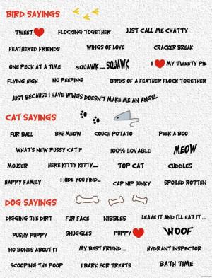 Bird, cat and dog sayings