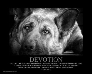 ... quotes dogs breeds animal friends dogs german dogs quotes sayings gsd