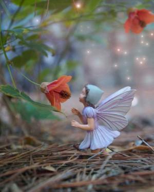 Flower Fairy in the garden
