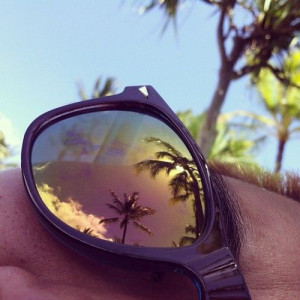 ... summer take me there # palm trees # sun # hawaii # summer # beach