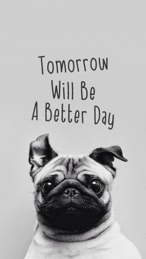 Tomorrow Will Be A Better Day Pug Android Wallpaper