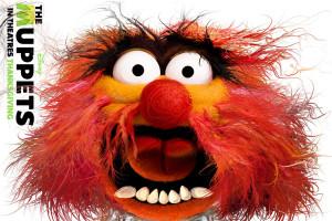 Muppets Animal Nikkolas Smith