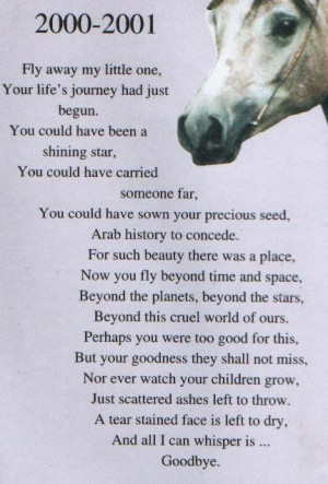 horse quotes poems