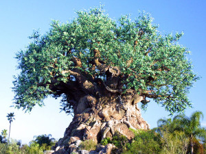Disneys Animal Kingdom Tree of Life