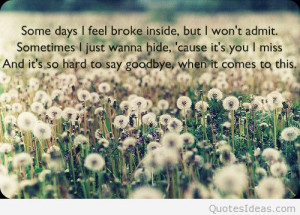 Tag Archives: goodbye my love quotes