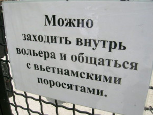 Related Pictures funny russian sayings