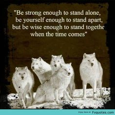... Leader Quote Motivational Wolf Animal You Quote - | Favorite Quotes