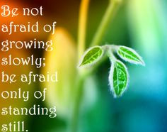 personal growth and development quotes - Google Search