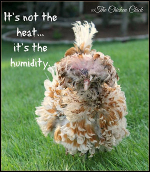 It's not the heat, it's the humidity.
