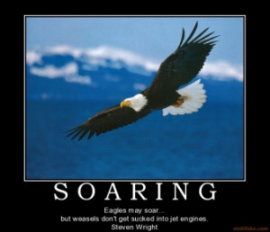 motivational quotes about eagles quotesgram