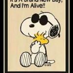 Funny-happy-wednesday-quote-cartoon-150x150.jpg