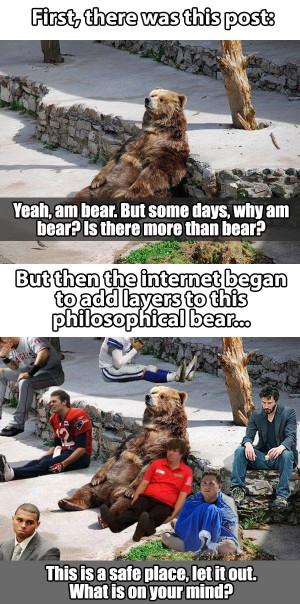 ... bear http geekstumbles com funny lolsnaps the safe place with bear