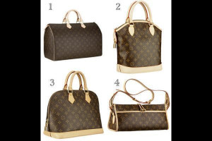 Louis Vuitton Picture Slideshow