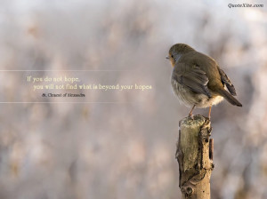 ... With Quotes Gallery: Beautiful Pictures With Quotes Lonely Bird