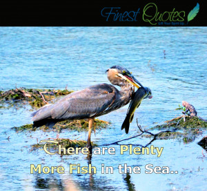 More Fish in the Sea Quotes