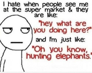 Yep, I'm hunting elephants