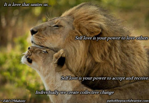 quotes about strength lions quotes about strength the lion has