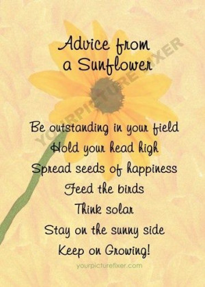 sunflower quotes | Advice from a sunflower.