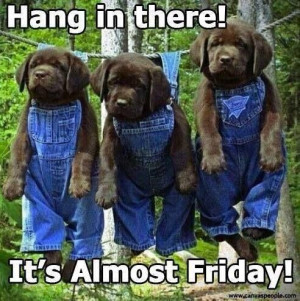 It's almost Friday!