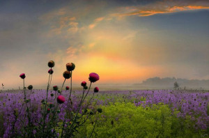 Truly beautiful landscapes photography2 Truly beautiful landscapes ...