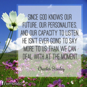 ... SAY MORE TO US THAN WE CAN DEAL WITH AT THE MOMENT. ~Charles Stanley