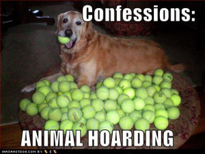 Animals and hoarding: Such a sad combo