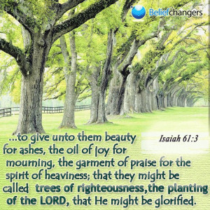 Trees of righteousness | Bible Verses