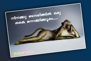 Malayalam Funny Dialogues For Orkut Facebook Movie Quotes 7 Picture