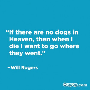 We're pretty sure all dogs go to heaven, but he makes a good point :)