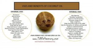 Uses And Benefits Of Coconut
