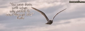 cover-450-you-were-born-wings-rumi-fb-cover-1388015484.jpg