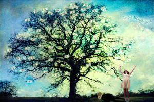 Money Tree by angiebro